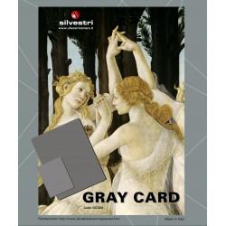 Silvestri Gray Cards